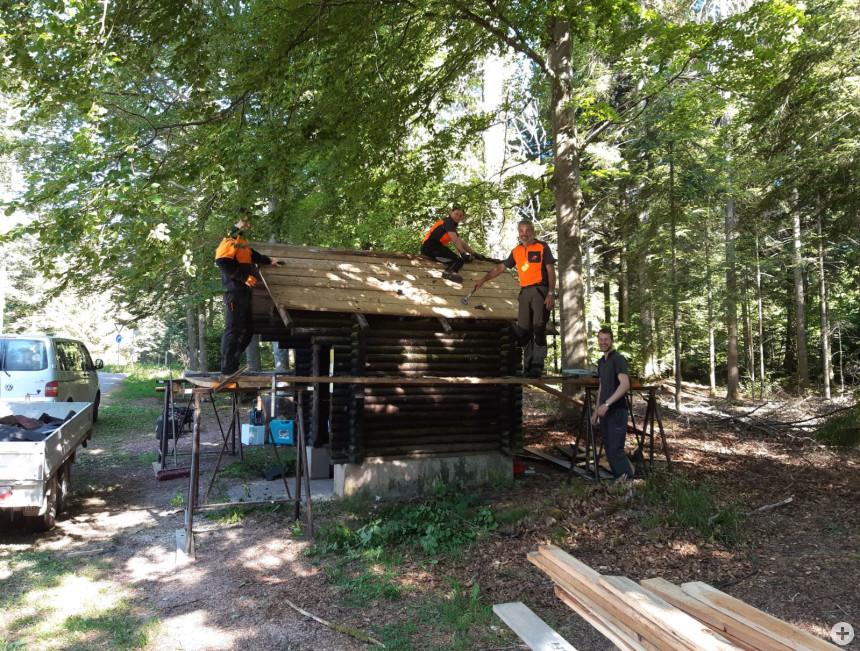 Forst-Azubis bei der Arbeit